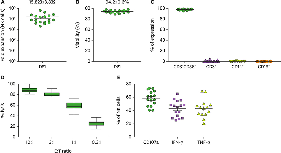 Optimization of Large-Scale Expansion and Cryopreservation of Human